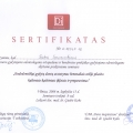 giedre_tarnauskiene_sertifikatas_13.jpg